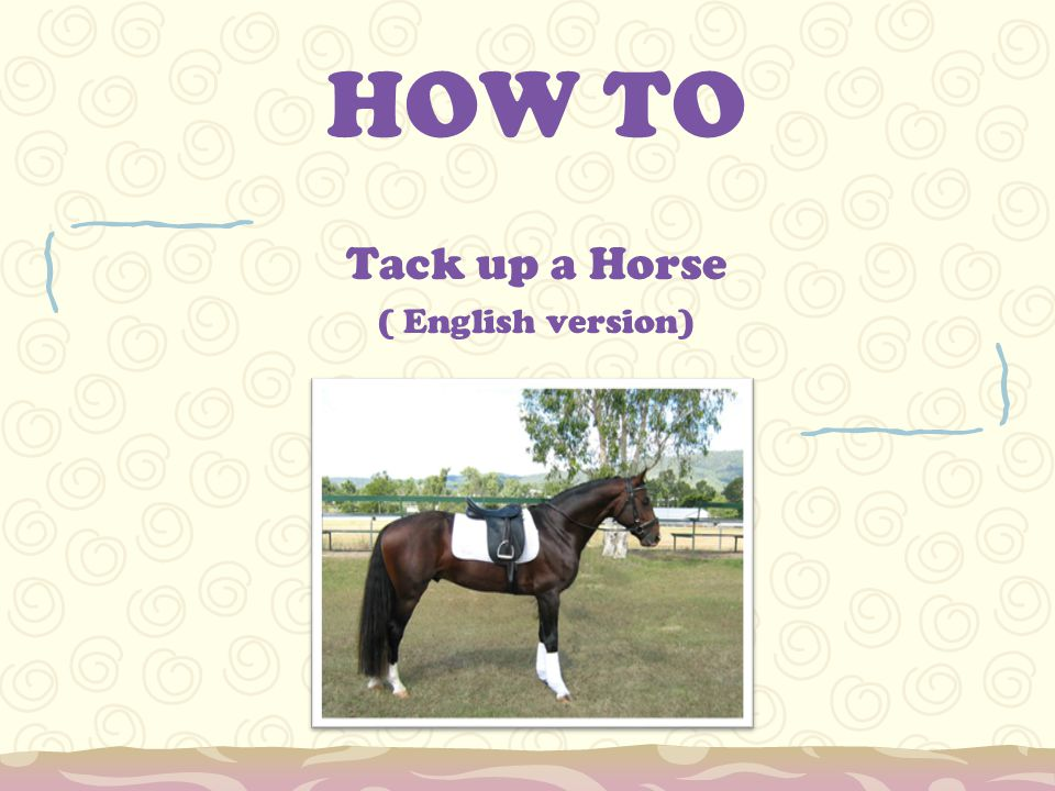 Tack up a Horse ( English version)