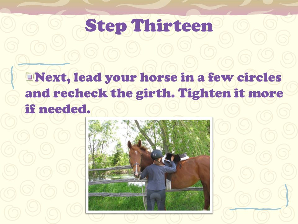 Step Thirteen Next, lead your horse in a few circles and recheck the girth.