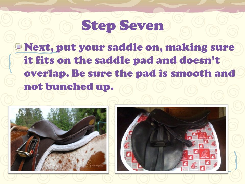 Step Seven Next, put your saddle on, making sure it fits on the saddle pad and doesn't overlap.