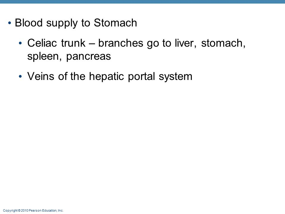 Blood supply to Stomach