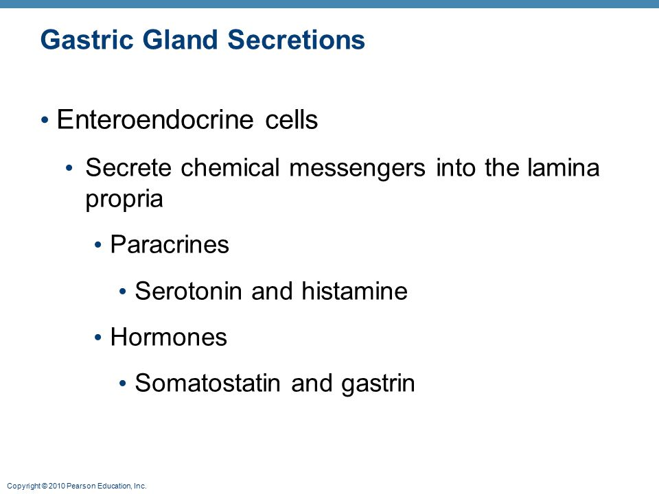 Gastric Gland Secretions