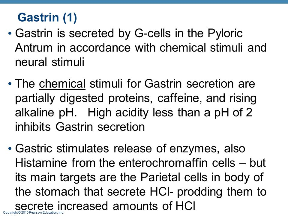 Gastrin (1) Gastrin is secreted by G-cells in the Pyloric Antrum in accordance with chemical stimuli and neural stimuli.