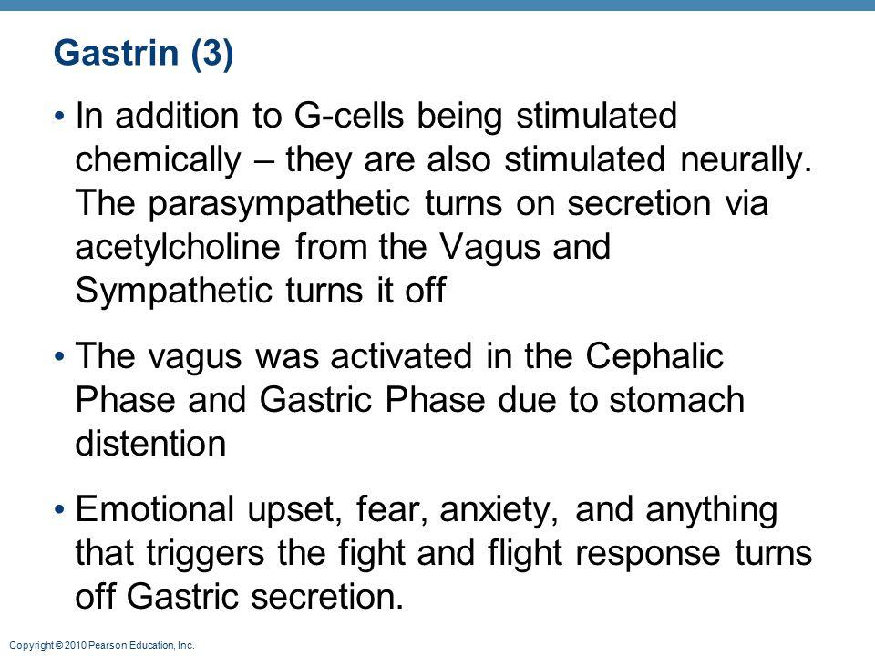 Gastrin (3)