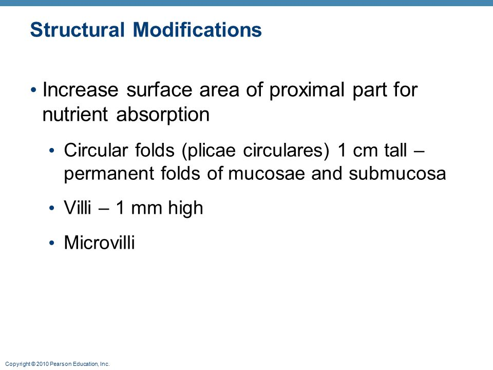 Structural Modifications