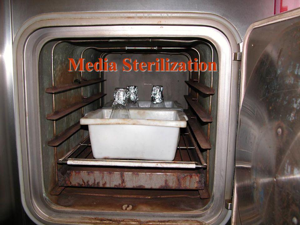 Media Sterilization