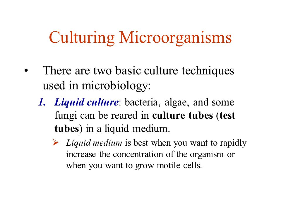 basic microbiological techniques This practical guide collects and explains the most basic techniques used in  general  there is every reason to expect a rapid change in basic  microbiological.