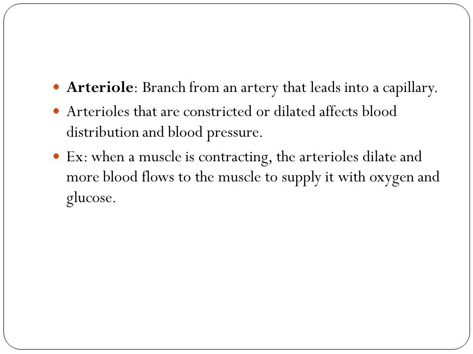 Arteriole: Branch from an artery that leads into a capillary.