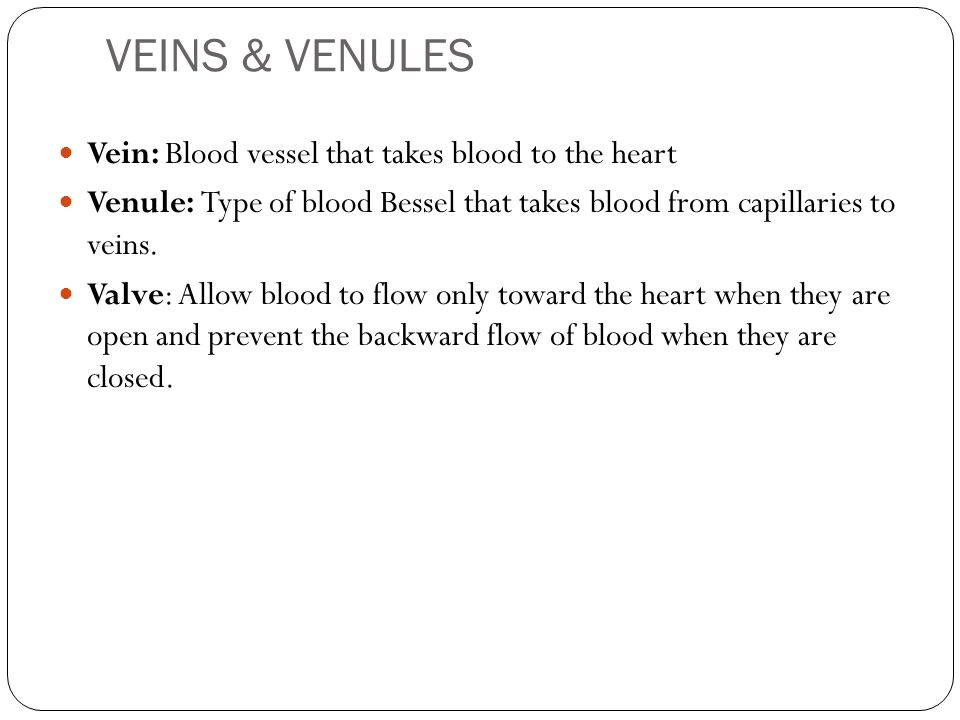 VEINS & VENULES Vein: Blood vessel that takes blood to the heart