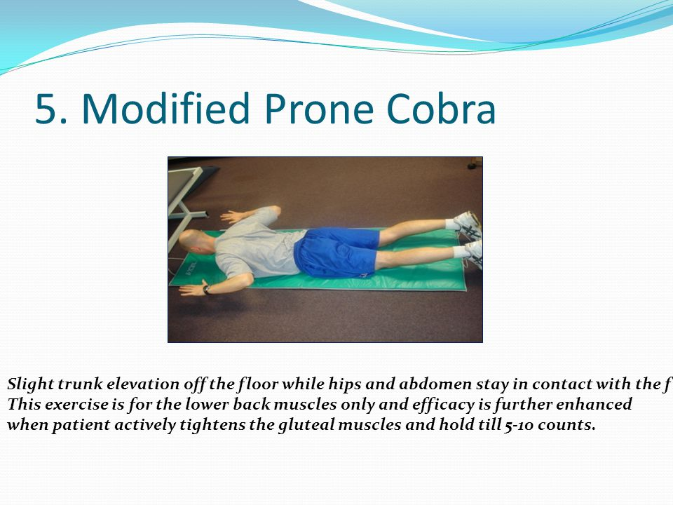 5. Modified Prone Cobra Slight trunk elevation off the floor while hips and abdomen stay in contact with the floor.