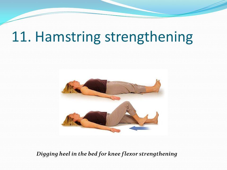 11. Hamstring strengthening