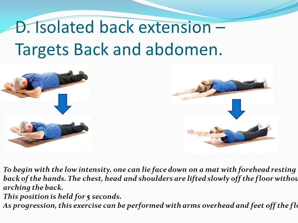 D. Isolated back extension – Targets Back and abdomen.