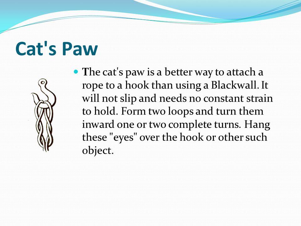 Cat s Paw