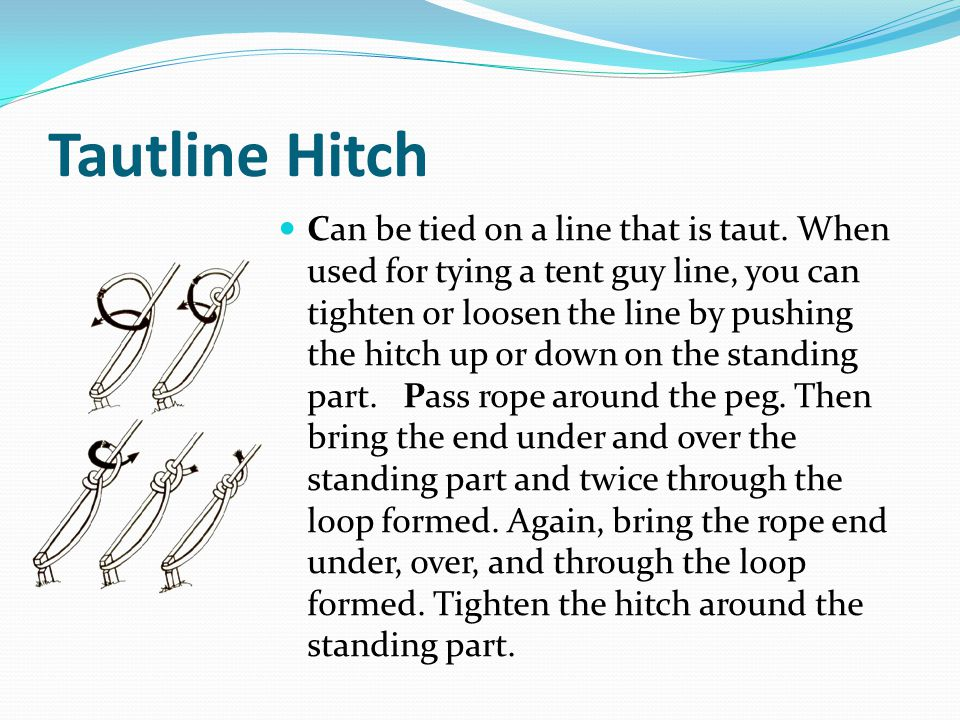 Tautline Hitch