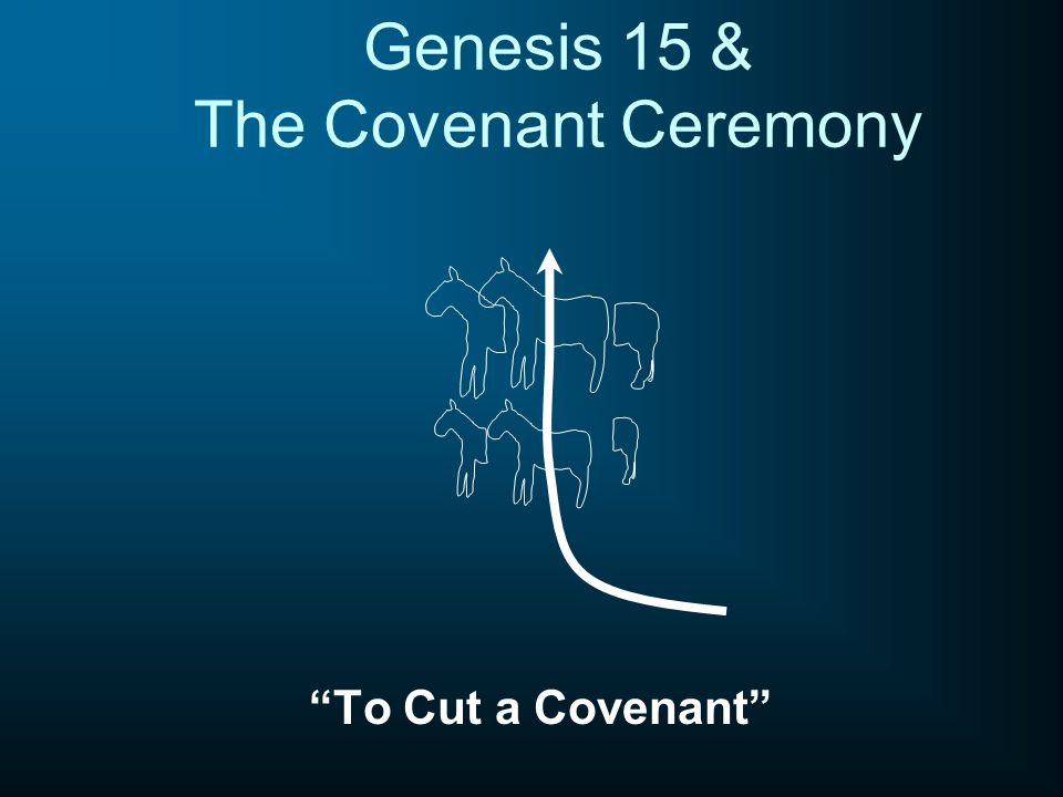 Genesis 15 & The Covenant Ceremony