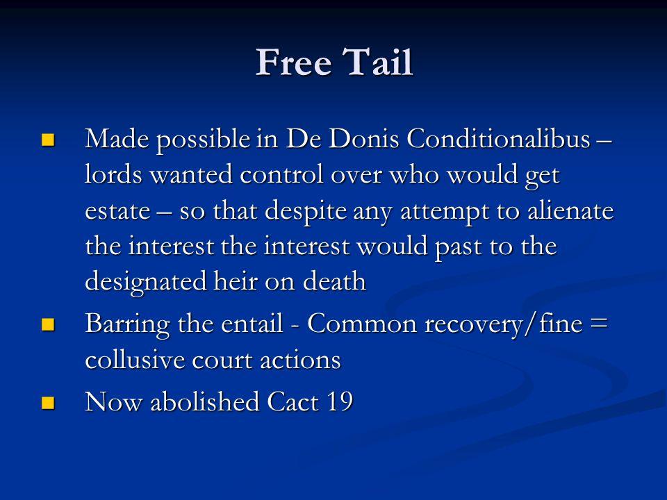 Free Tail