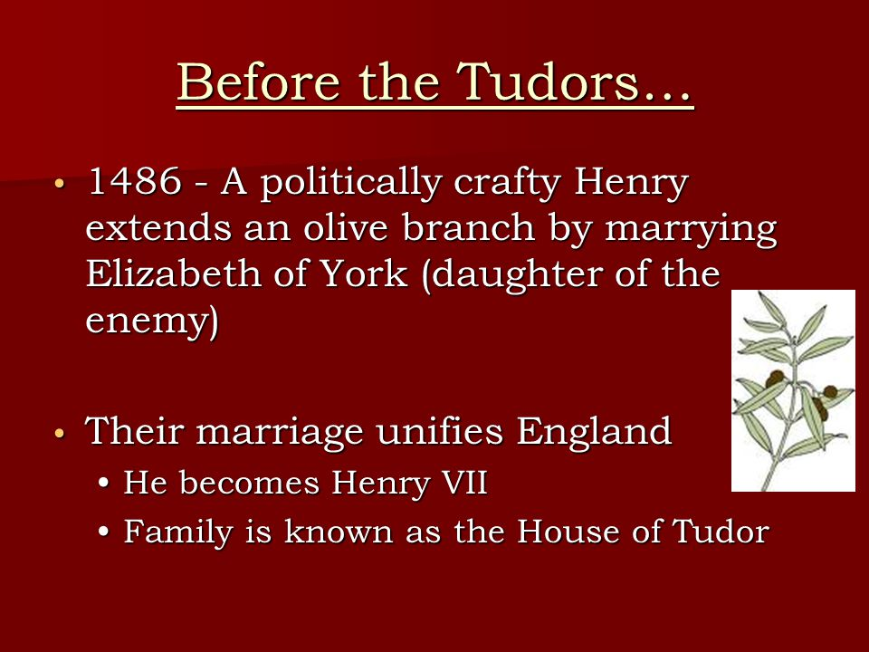 Before the Tudors… 1486 - A politically crafty Henry extends an olive branch by marrying Elizabeth of York (daughter of the enemy)