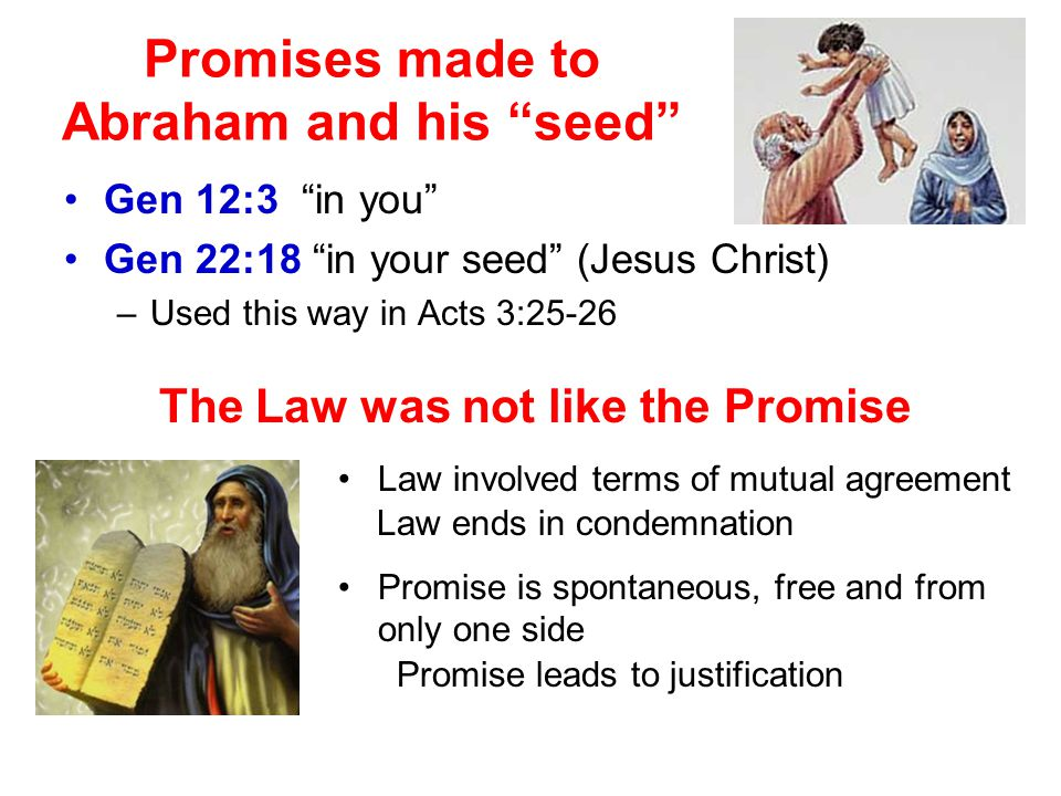 Promises made to Abraham and his seed