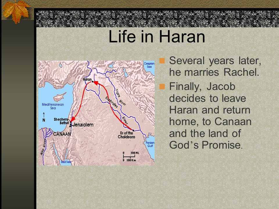 Life in Haran Several years later, he marries Rachel.