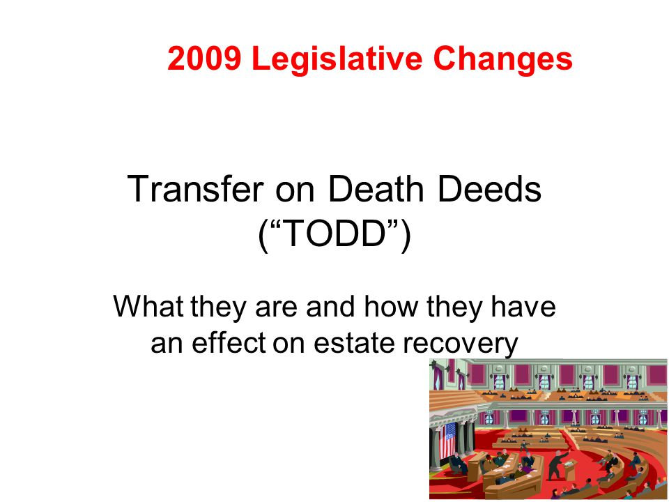 Transfer on Death Deeds ( TODD )