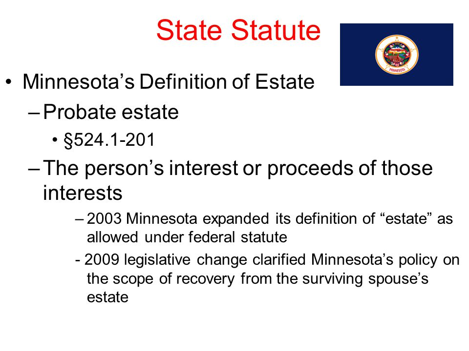 State Statute Minnesota's Definition of Estate Probate estate