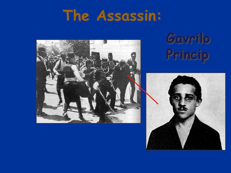 The Assassin: Gavrilo Princip