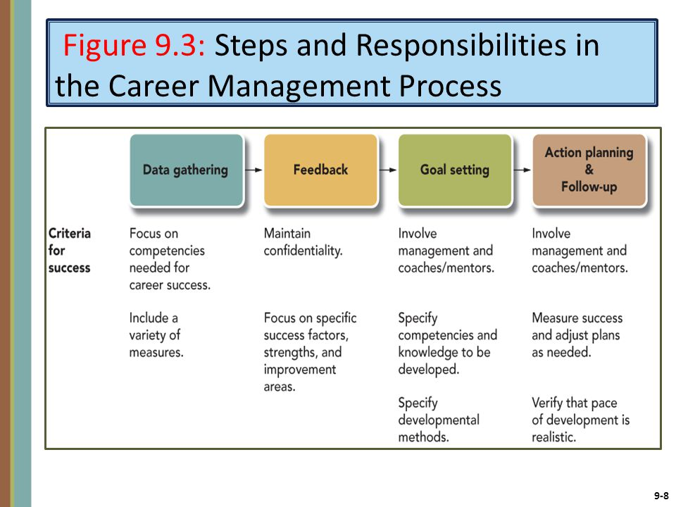 Figure 9.3: Steps and Responsibilities in the Career Management Process