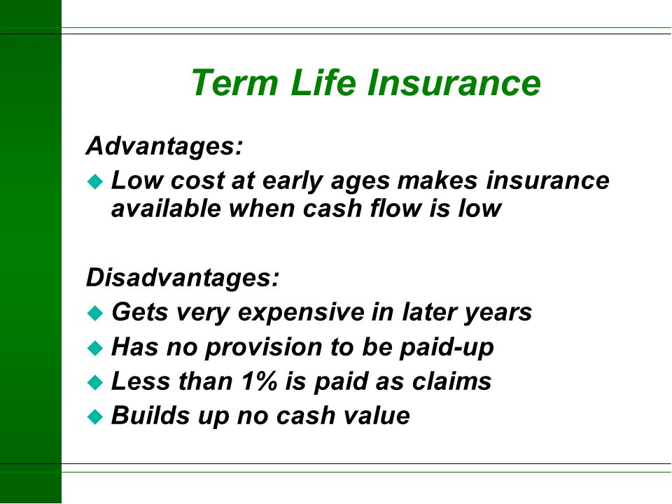 Term Life Insurance Advantages: