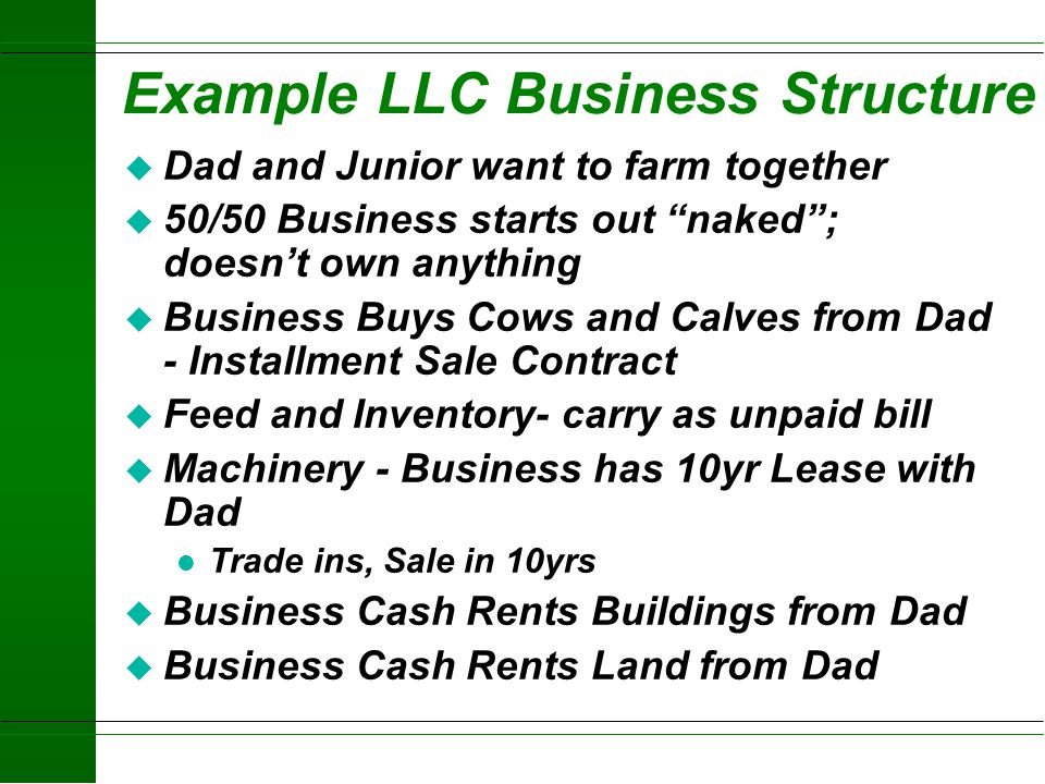 Example LLC Business Structure