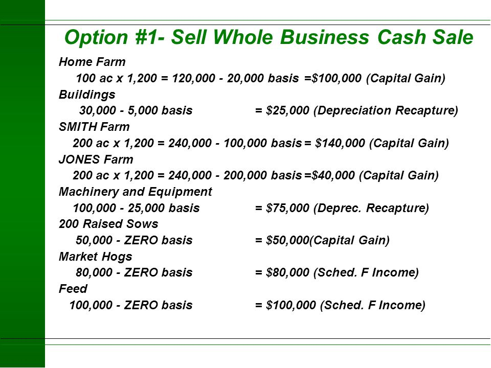 Option #1- Sell Whole Business Cash Sale