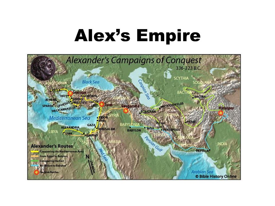 Alex's Empire