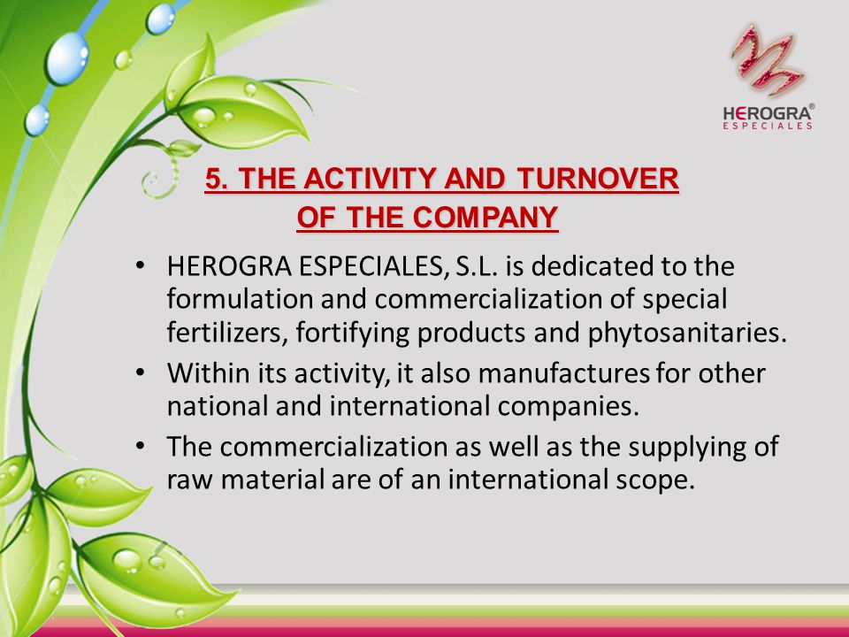 5. THE ACTIVITY AND TURNOVER OF THE COMPANY
