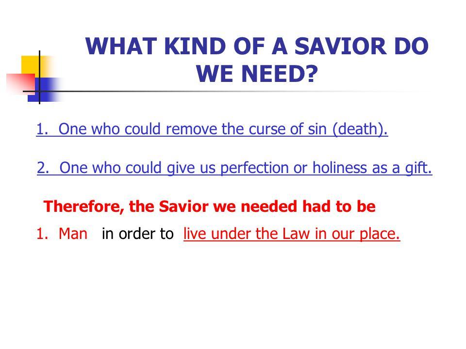 WHAT KIND OF A SAVIOR DO WE NEED