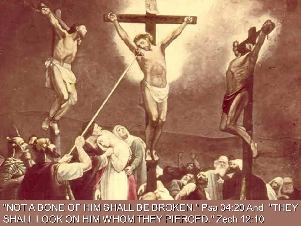 NOT A BONE OF HIM SHALL BE BROKEN