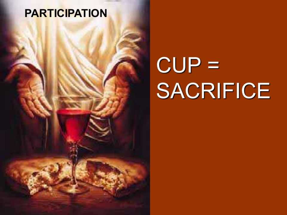 PARTICIPATION CUP = SACRIFICE