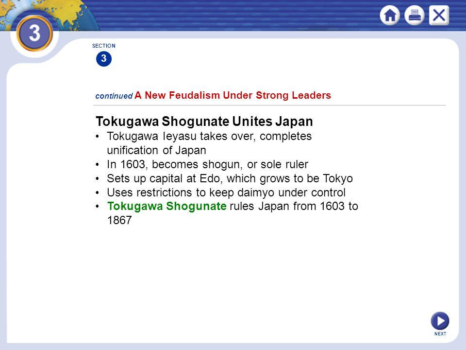 Tokugawa Shogunate Unites Japan