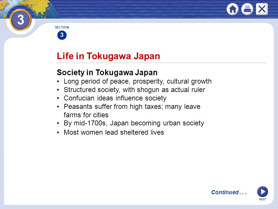 Life in Tokugawa Japan Society in Tokugawa Japan