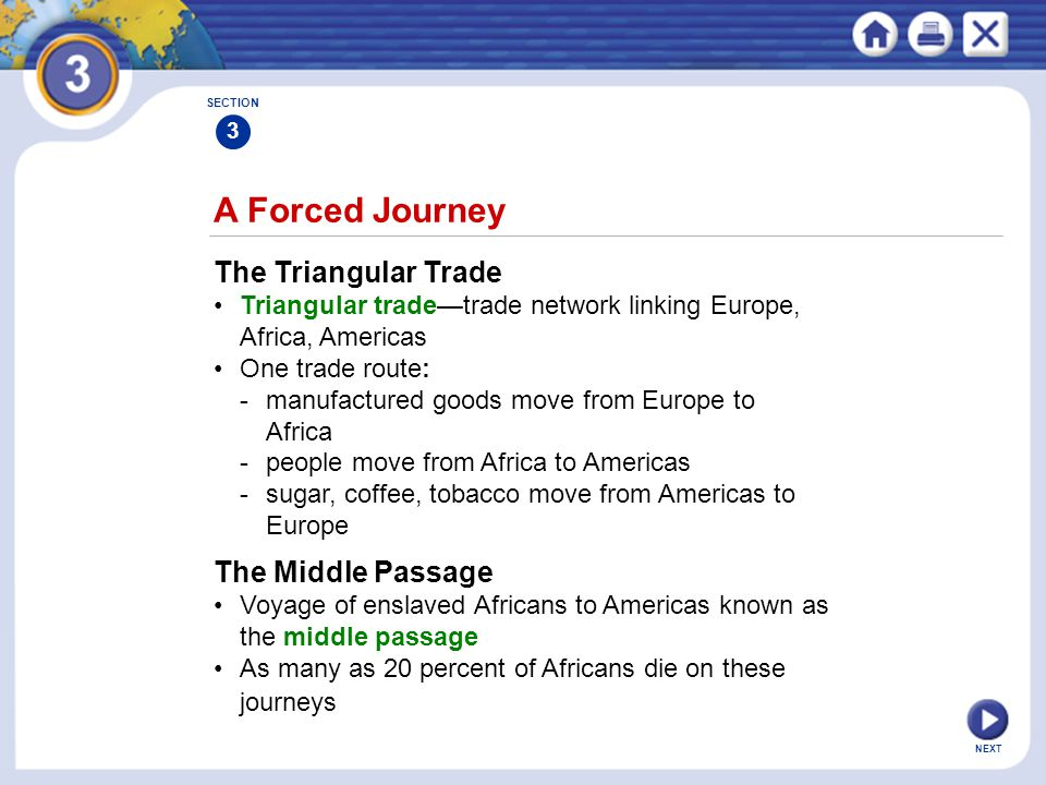 A Forced Journey The Triangular Trade The Middle Passage