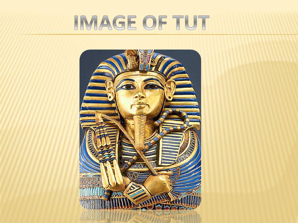 IMAGE OF TUT