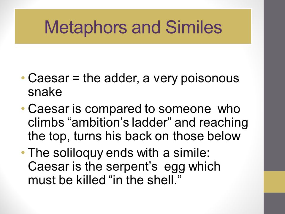 Metaphors and Similes Caesar = the adder, a very poisonous snake