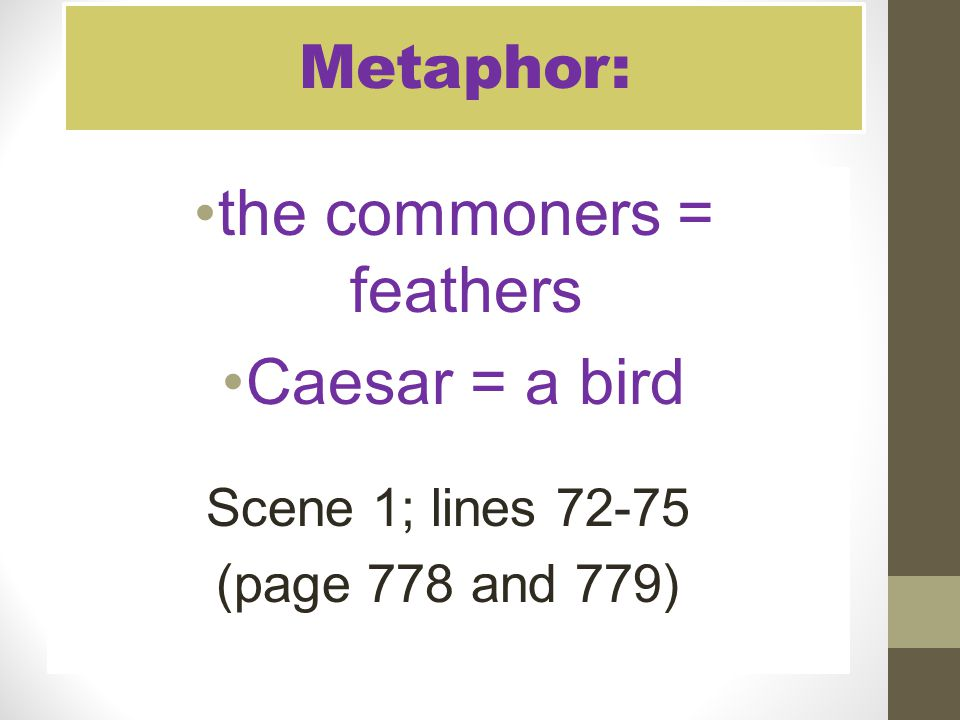 the commoners = feathers