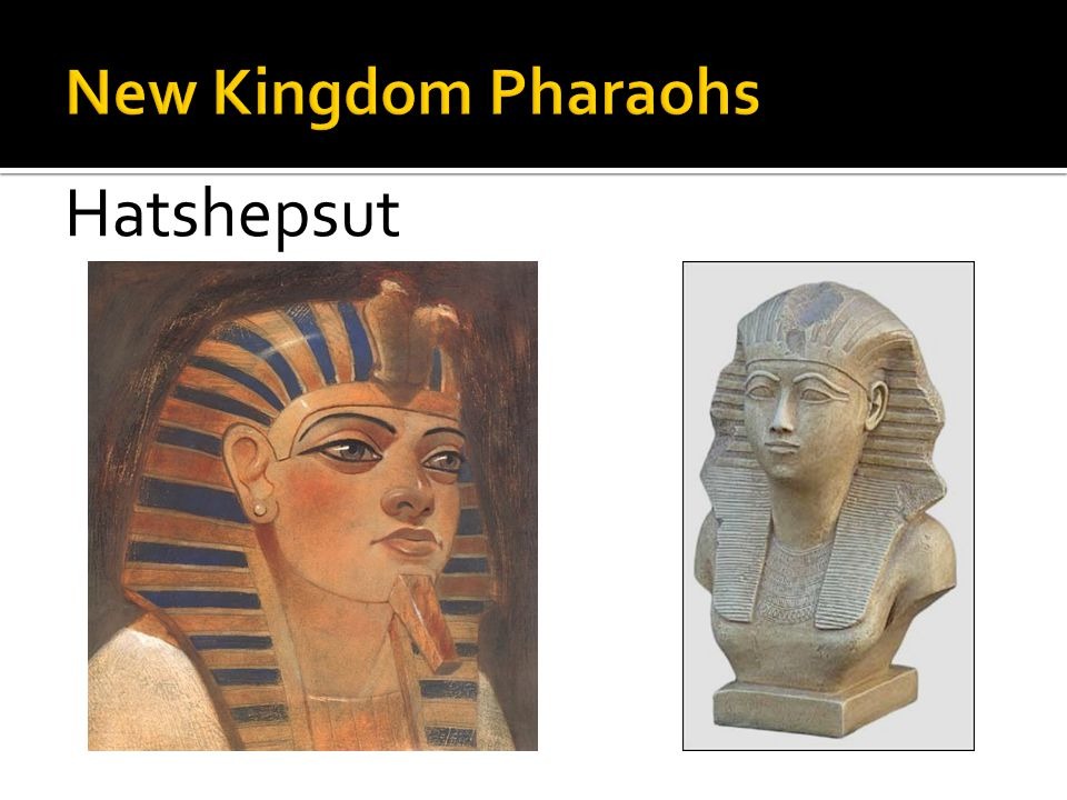 New Kingdom Pharaohs Hatshepsut