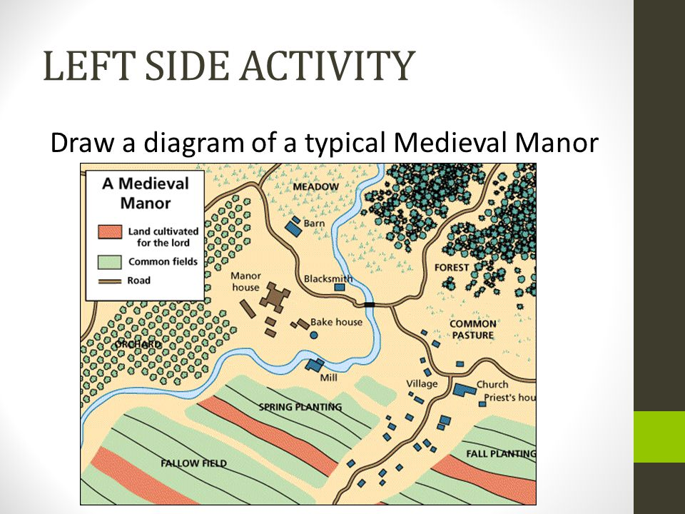 LEFT SIDE ACTIVITY Draw a diagram of a typical Medieval Manor