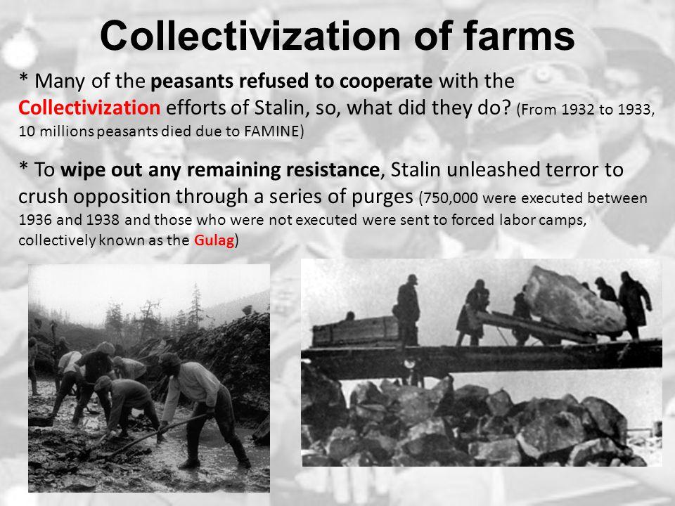 Collectivization of farms