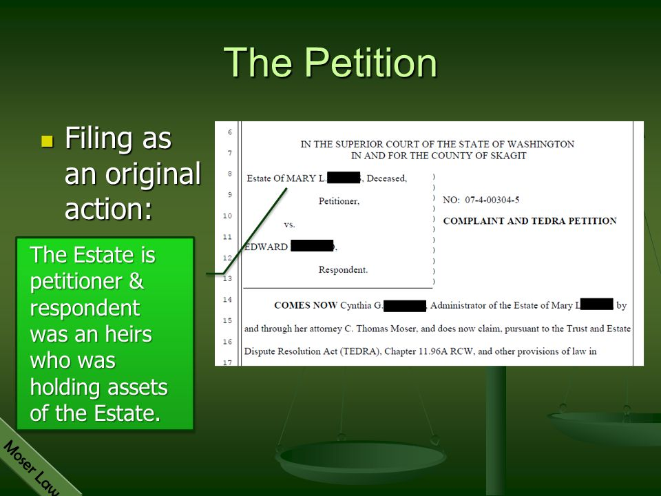 The Petition Filing as an original action: