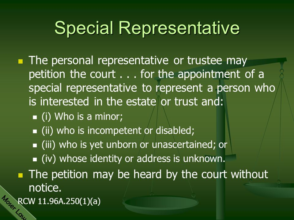 Special Representative