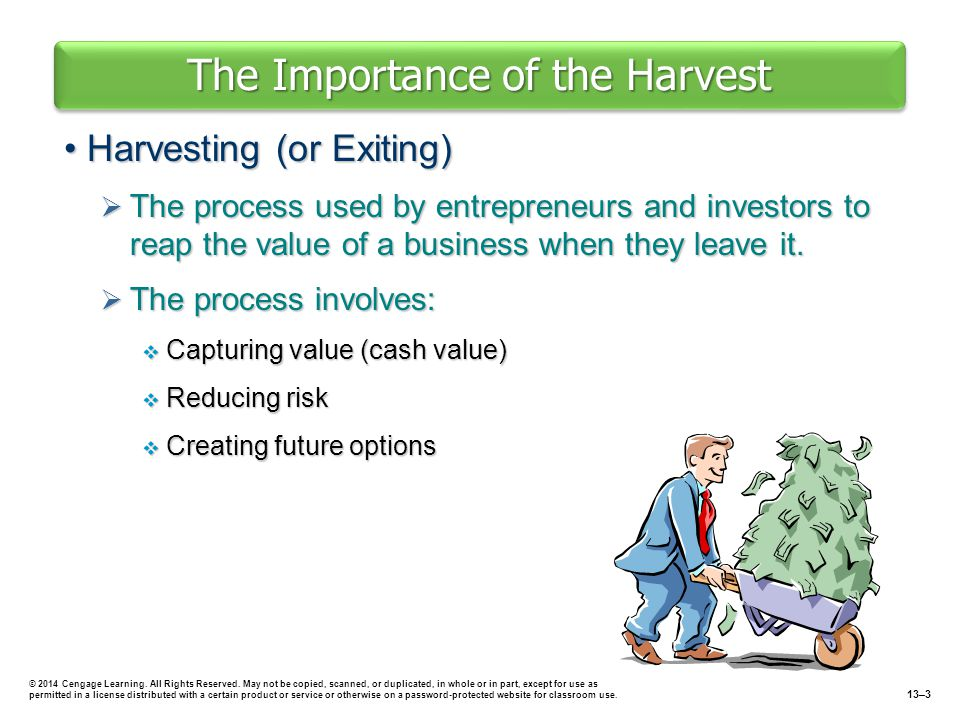 The Importance of the Harvest