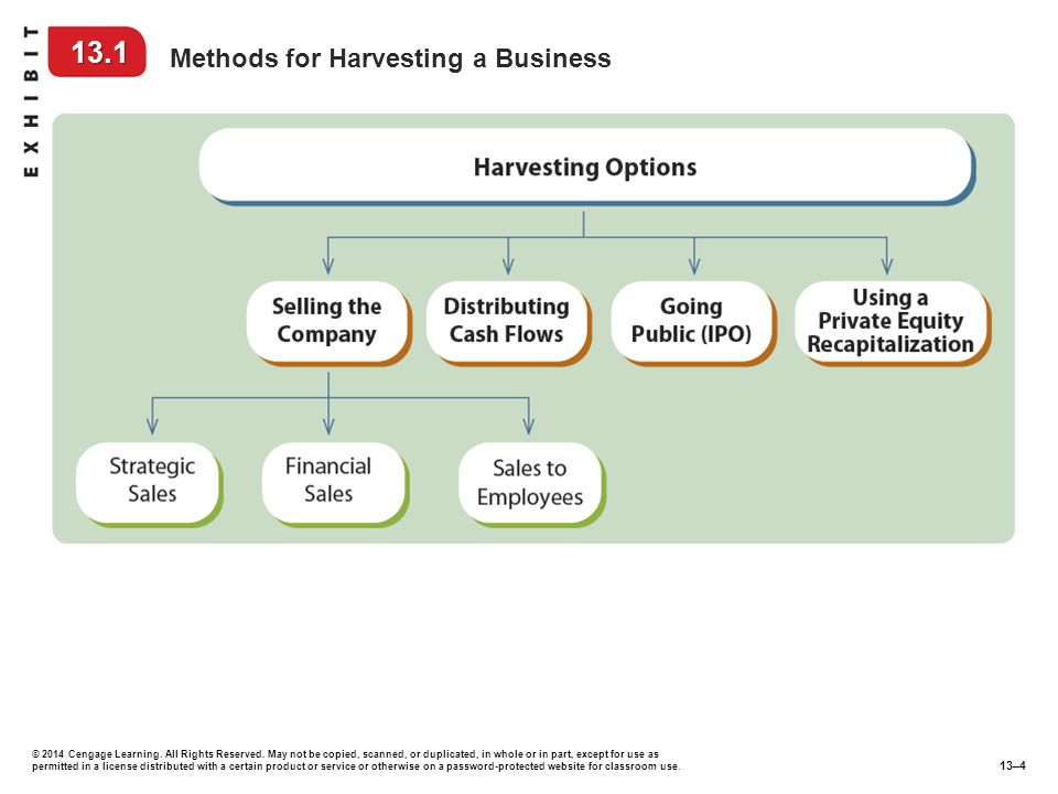 13.1 Methods for Harvesting a Business