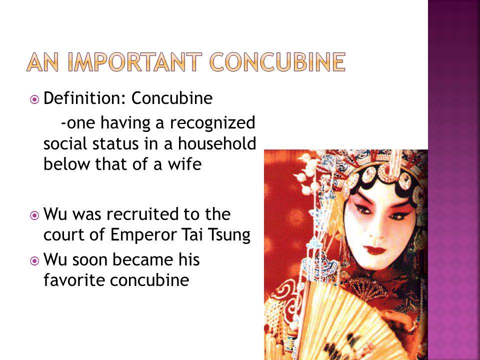 An Important Concubine