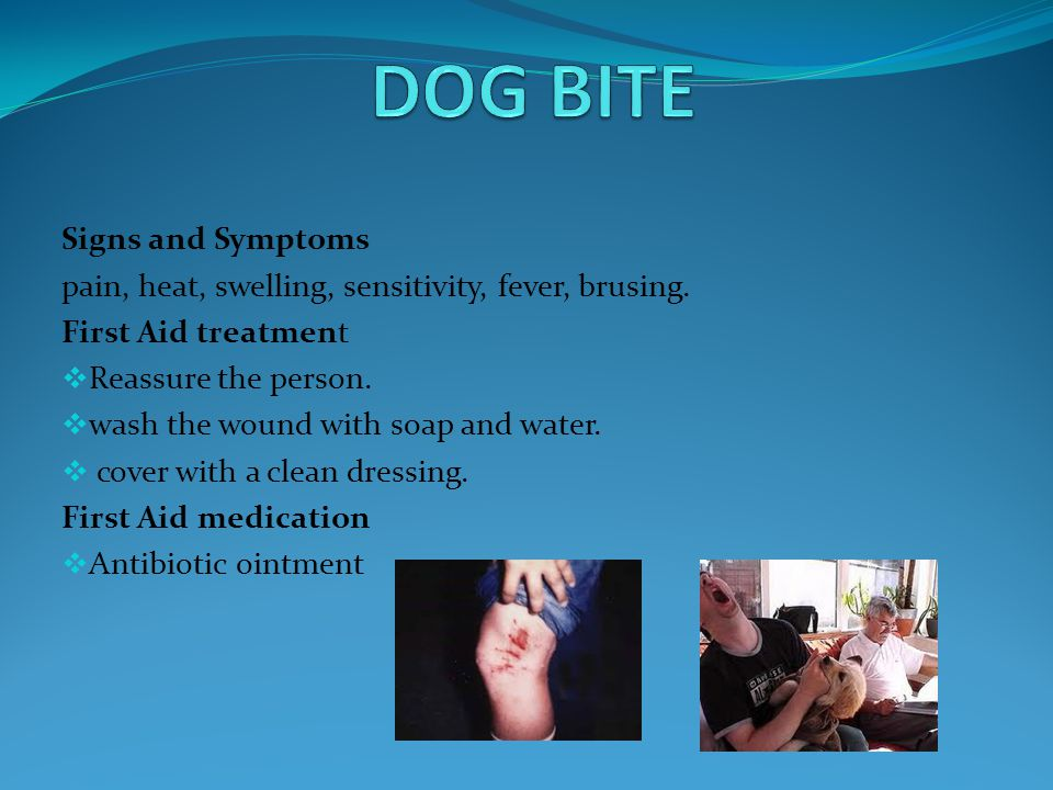 DOG BITE Signs and Symptoms