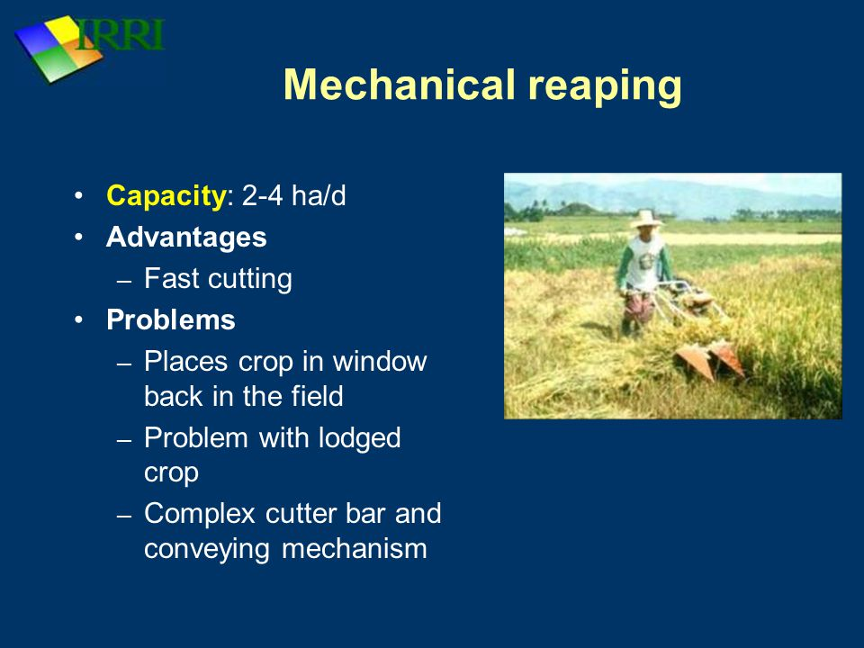 Mechanical reaping Capacity: 2-4 ha/d Advantages Fast cutting Problems